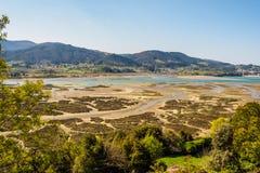 Paludi nella riserva di biosfera di Urdaibai fotografie stock