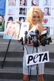 Pamela Anderson Royalty Free Stock Image