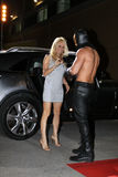Pamela Anderson lizenzfreies stockbild