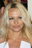 Pamela Anderson fotografering för bildbyråer
