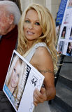 Pamela Anderson royalty-vrije stock afbeeldingen