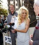 Pamela Anderson foto de archivo