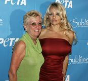 Pamela Anderson Celebrates 40th födelsedag arkivbilder