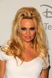 Pamela Anderson Stock Image