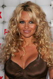 Pamela Anderson Royalty Free Stock Photos