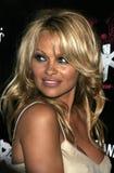 Pamela Anderson Stock Image