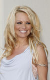 Pamela Anderson royalty free stock photography