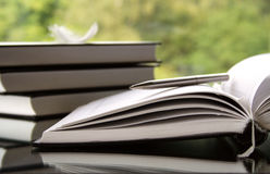 pamiętnik otwarte Zdjęcie Stock