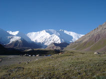 Pamir. Base camp under the Lenin Peak Royalty Free Stock Images
