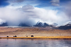 Pamirs Scenery Royalty Free Stock Photography