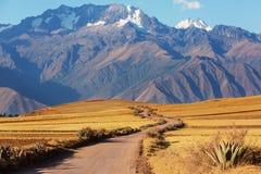 Pampa peruviana Fotografia Stock