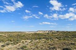 Pampawoestijn tot horizon Royalty-vrije Stock Fotografie