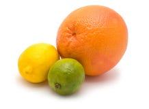 Pampelmuse, Zitrone und Kalk Stockbilder