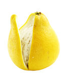 Pampelmuse (Zitrusfrucht grandis) Lizenzfreies Stockfoto