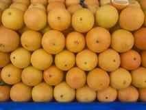 Pampelmusenfrüchte für Verkauf; natürliche Früchte Stockfoto