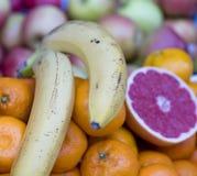 Pampelmusentangerine und -banane stockbild