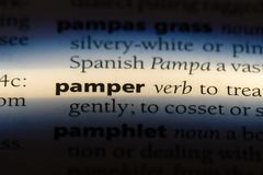 Pamper. Word in a dictionary.  concept stock image