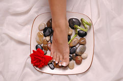 Pamper yourself. A pedicured foot in a plate with a red rose and bamboo Royalty Free Stock Photography