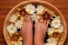 Pampered Feet. A pair of pedicured feet in a bowl full of water, pebbles, and various fresh flowers Stock Images