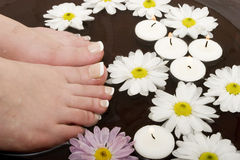 Pampered feet Royalty Free Stock Photography