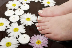 Pampered feet Stock Photo