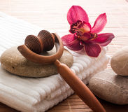 Indulging massage. Pampering retreat and natural relaxation royalty free stock photos