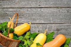Pampkin e zucchini con le foglie verdi sulla tavola di legno d'annata Fondo del raccolto di autunno Fotografia Stock