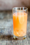 Pamplemousse et tequila Paloma Cocktail images stock