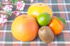 Pamplemousse, kiwi, orange et chaux avec des fleurs Images libres de droits