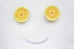 Pamplemousse sur la neige avec le sourire Images stock