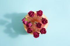 Pamplemousses et roses rouges image libre de droits