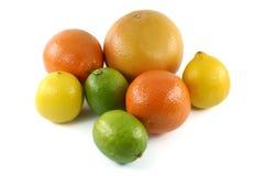 Pamplemousses, mandarines, limettes et citrons, fin vers le haut Image libre de droits