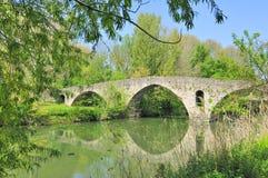 Pamplona, Bridge of Magdalena. Pamplona (Navarra,Spain) Bridge of Magdalena, river Arga Royalty Free Stock Images