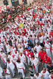 PAMPLONA, SPAIN -JULY 8: Before the runs, the bull Royalty Free Stock Photo