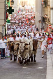 PAMPLONA, SPAIN-JULY 9: Bulls and men running in street during S Royalty Free Stock Images