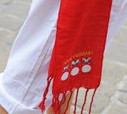 Pamplona, ville colore le blanc et le rouge Photo libre de droits