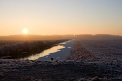 Pampushout阿尔梅勒在树冰盖的荷兰, Pampushout 免版税库存照片