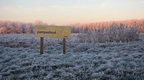 Pampushout Almere Netherlands covered in hoar-frost, Pampushout. Almere Nederland gehuld in rijp royalty free stock image