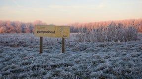 Pampushout Almere Países Baixos cobertos na hoar-geada, Pampushout imagem de stock royalty free