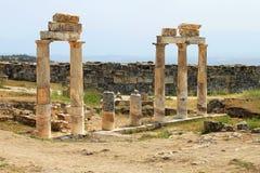 pamukkale hierapolis губит индюка стоковая фотография rf