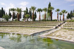 Pamukkale - park, Turkey Stock Photography