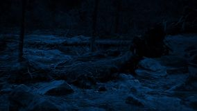 Pan across wild river shore at night stock footage