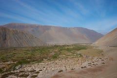 Pan American Highway en Chile septentrional Fotografía de archivo libre de regalías