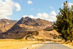 Pan American Road In Ecuador Stock Photo