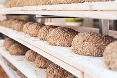 Pan antes de cocer Foto de archivo libre de regalías