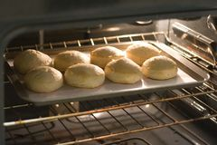 Pan of biscuits in oven. Pan of biscuits in lighted oven Stock Image