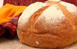 Pan blanco de la montaña Fotografía de archivo