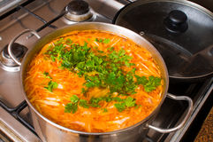 Pan of a borsch and frying pan. Royalty Free Stock Photo