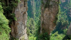 Pan Bottom Up High Rocky Stone Pillars Of Mountains In Forest Park Zhangjiajie. Panorama from the base of cliff to the top, breathtaking mountains with high stock video