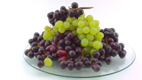 Pan of clusters of Grapes stock video footage